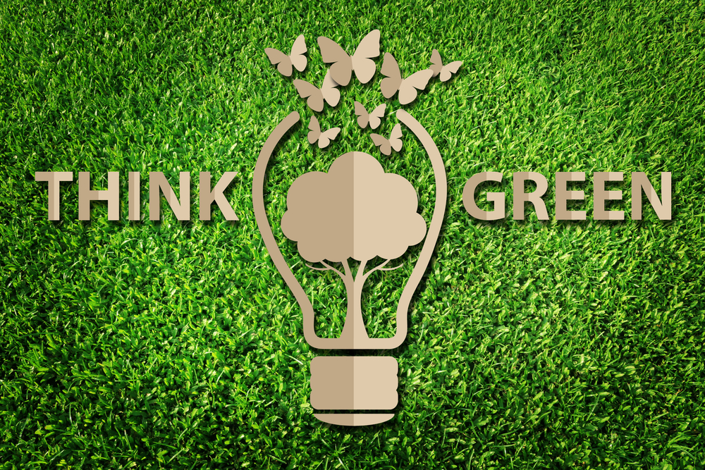 Corporate Greenwashing
